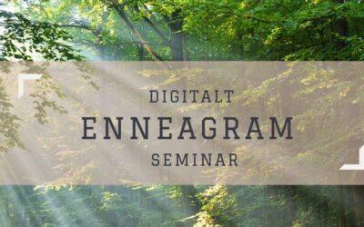 Enneagram seminar 20.03.21 kl 13-17
